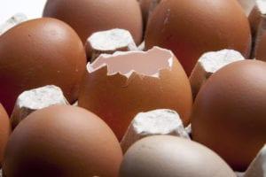 eggshell plaintiff pre-existing conditions